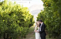 Cabrières_d'Avignon_wedding_photos